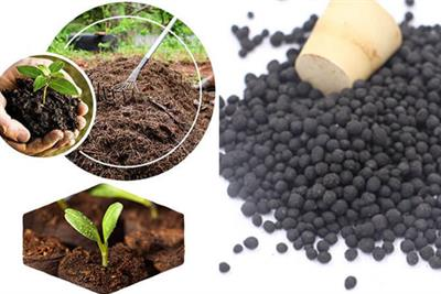That's What You Need To Know To Start An Organic Fertilizer Production Line-2