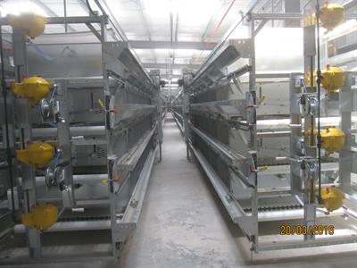 Salmet - Model S1000 - Cage Rearing System