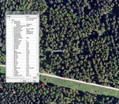 Forest Assessor - Automatic Forest Evaluation using e.Cognition