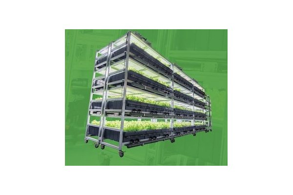 AEssenseGrows Fresh - Fully Automated Vertical Stacked Aeroponic System