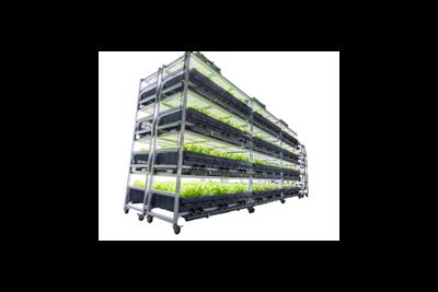 AEtrium - Model 2.1 - Automated, Aeroponic Growing System