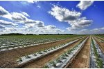 Water monitoring technology for agriculture & irrigation - Agriculture - Irrigation