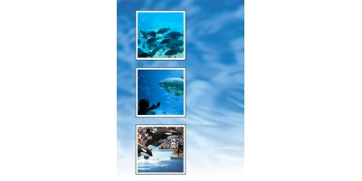 Mazzei - Systems for Aquariums & Aquaculture