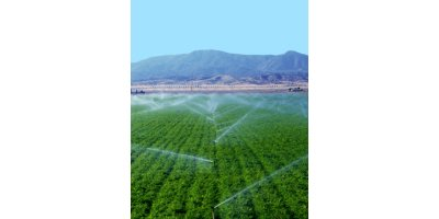 Rain for Rent - Sprinkler Irrigation System