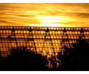 CHP Greenhouses Make Growing Even Greener