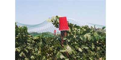 Bare Hand - Vineyard Netting and Crop Netting