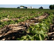 New Tool Offers Growers Easy Option to Measure Soil Organic Matter Content