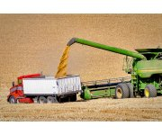 OSU Agriculture Safety and Health Professionals Offer Grain Handling Safety Tips