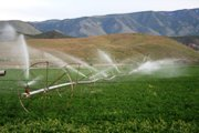 Irrigation with treated waste water: A growing fact