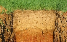 Characterising the biodiversity and functioning of European soils