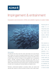 Impingement & Entrainment of fish
