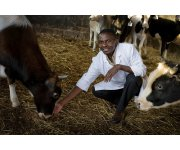West-African livestock farming offers opportunities for Dutch industry