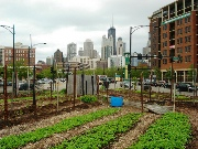 From Creative Ideas to Specific Plans for Urban Agriculture