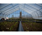 Dutch-German research team develops new integrated crop protection system for greenhouse horticulture