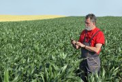 Advantages of the Big Data technology for Smart Farming