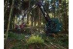 Timber harvesting - Forestry & Wood