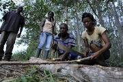 Putting People at the Centre of Forest Policies - The State of the World`s Forests (SOFO)