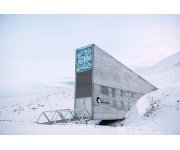 Ancient crops preserved for future generations in Arctic seed vault