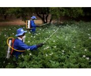 Growing need to revamp national laws governing pesticides