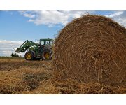 Canadian Agriculture to Benefit from WTO Agreement