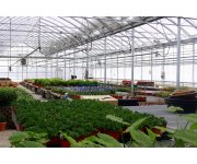 Canada Supporting Growth in the Horticulture Industry