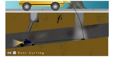 Drain Root Cutting