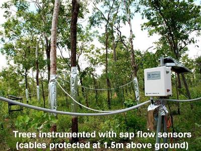 Field Installation Services