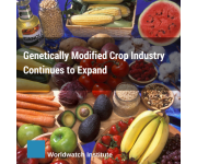 Genetically Modified Crop Industry Continues to Expand