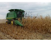 New USDA-ISU Report Validates Cellulosic Ethanol Biomass Sustainability