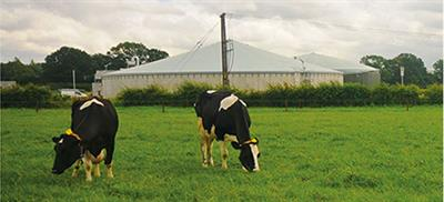 EnviFarm - Our solution for Biogas // Agricultural sector