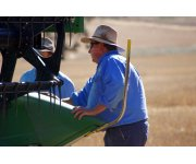 USDA Unveils Key New Programs to Help Farmers Manage Risk