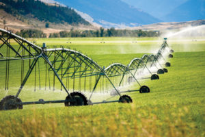 Water treatment solutions for agriculture industry - Agriculture