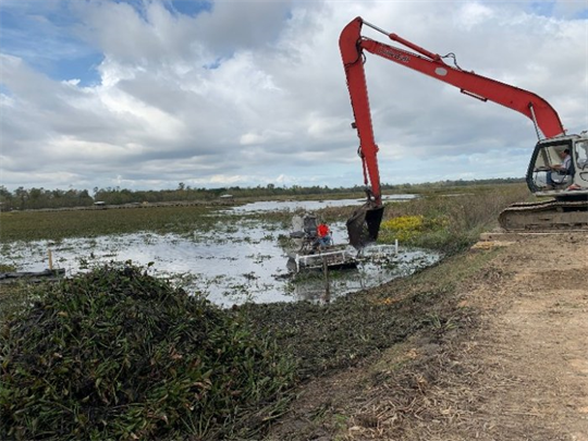 Water Hyacinth removal project