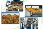 BioEnergy - Technologies for Farms, Food Processors and Electric Utilities