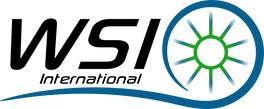 WSI International, LLC