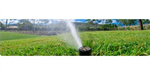 Irrigation System Design and Installation Services