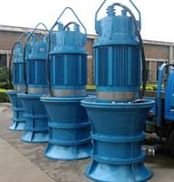 GanQuan - Model QZB - Submeisible Axial Flow Pump