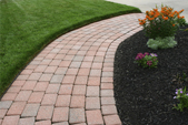 Carbon8 - Top Dress for Lawns