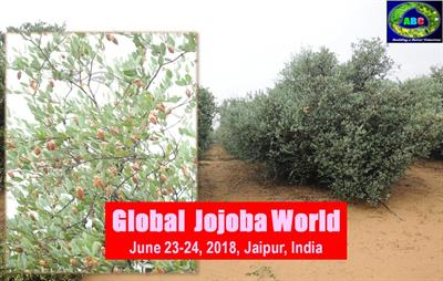 Global Jojoba World 2018