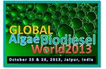 2 Day Algae Fuel State of Art International Workshop