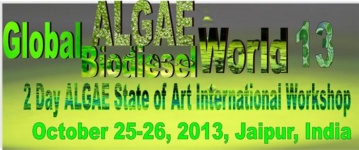 Global  Algae Biodiesel World 2013