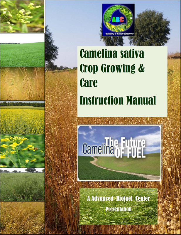 Camelina Growing & Care Instruction Manual