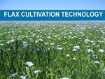 Flaxseed Cultivation Technology