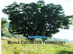 Mahua Cultivation Technology