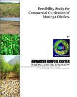 Moringa Project - Feasibility Study for Commercial Cultivation of Moringa Oleifera