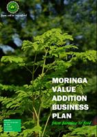 Moringa India - Model 2018 - Moringa Value Addition Business Plan