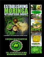 Moringa India - Model 2018 - Establishing Moringa International Market