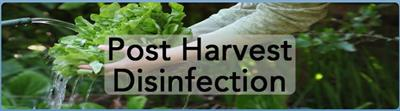 Post Harvest Disinfection Services