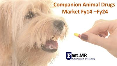 Companion Animal Drugs Market Analysis 2024 Key Findings, Company Profiles, Complete Analysis, Growth Strategy, Developing Technologies, Trends and Forecast by Regions