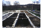 Wetland Fish Farm Effluent Treatment Systems